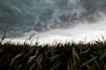 Ostrzeżenie meteorologiczne – uwaga burze