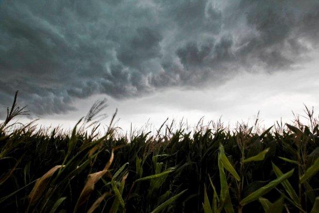 Ostrzeżenie meteorologiczne - uwaga burze