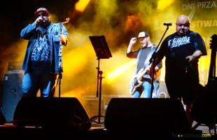 Letni Festiwal Muzyczny Przasnysz 2015 - dzień drugi